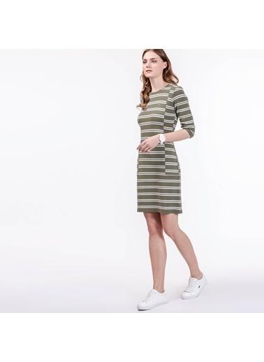 Çizgili Elbise-Lacoste